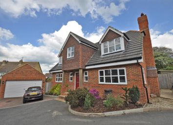 Thumbnail 4 bed property for sale in Hempstead Lane, Hailsham