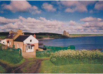 Thumbnail 5 bed cottage for sale in Ackergill, Wick