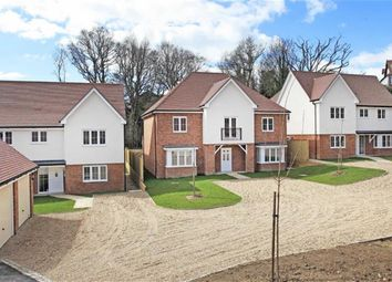 Thumbnail 5 bed detached house for sale in The Hollies, Hastings, Sussex