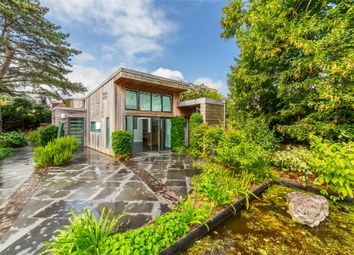 Thumbnail 3 bed detached bungalow to rent in Deepdene Park, St. Leonards, Exeter