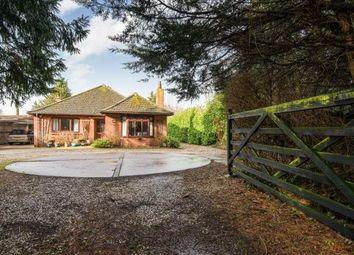Thumbnail 3 bedroom bungalow for sale in Barnham Broom, Norfolk