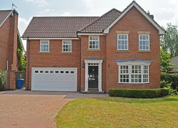 Thumbnail 5 bed detached house to rent in Woodhall Park, Beverley