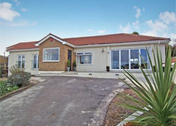 Thumbnail 4 bedroom detached bungalow for sale in Beer, Seaton, Devon