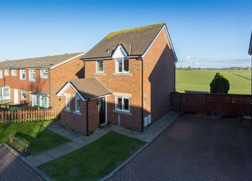 Thumbnail 3 bed detached house to rent in Butterworth Close, Wesham, Preston