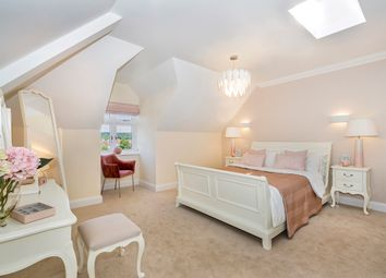 Thumbnail 2 bed flat to rent in Higher Downs Road, Babbacombe, Torquay