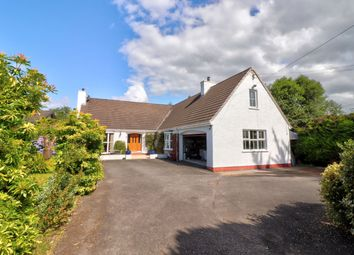 Thumbnail 5 bed detached house for sale in Front Road, Drumbo, Lisburn
