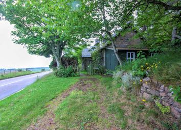 Thumbnail 3 bed cottage for sale in Loth School House, Loth, Helmsdale