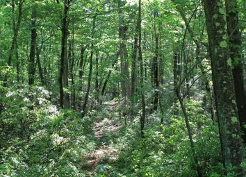Thumbnail Land for sale in Conant Valley Road Pound Ridge, Pound Ridge, New York, 10576, United States Of America