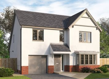 """Thumbnail 4 bed detached house for sale in """"Skybrook"""" at St. Martin Crescent, Strathmartine, Dundee"""