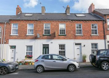 Thumbnail 3 bed terraced house to rent in 12, Trevor Street, Holywood