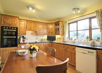 Thumbnail 4 bedroom detached house for sale in Waterloo Road, Hainford, Norwich