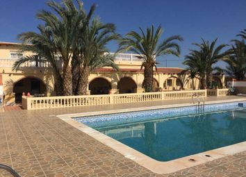 Thumbnail 5 bed finca for sale in Albatera, Alicante, Valencia, Spain