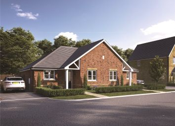 Thumbnail 2 bedroom bungalow for sale in The Grove, Rockmill End, Willingham, Cambridgeshire