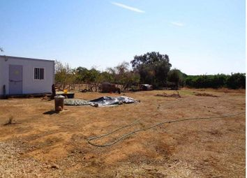 Thumbnail 3 bed semi-detached house for sale in Silves, Silves, Portugal