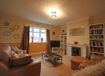 Thumbnail 3 bedroom bungalow for sale in Stannersburn, Hexham
