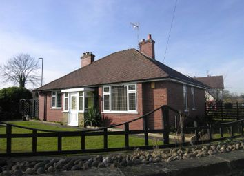 Thumbnail 2 bed detached bungalow to rent in Radbourne Lane, Nr Mackworth Village, Derby