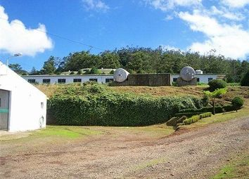Thumbnail 10 bed barn conversion for sale in Madeira Island, Santo António Da Serra, Santa Cruz, Madeira Islands, Portugal