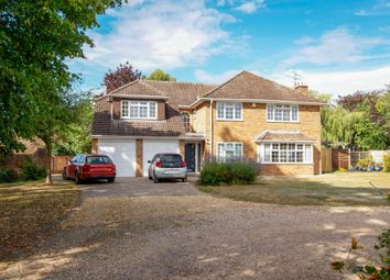 Tarrant Gardens, Hartley Wintney, Hook RG27. 5 bed detached house