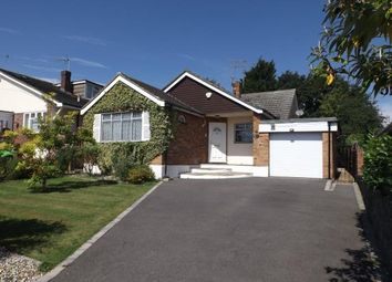 Thumbnail 4 bed bungalow for sale in Wickford, Essex, .