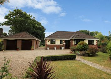 Thumbnail 4 bed bungalow for sale in Ringwood Road, Three Legged Cross, Wimborne