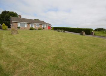 Thumbnail 4 bed detached bungalow for sale in Northgate, Hunmanby, Filey