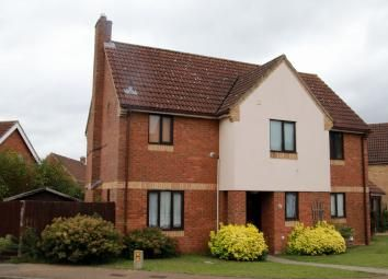 Thumbnail 4 bed detached house to rent in Elm Close, Brandon