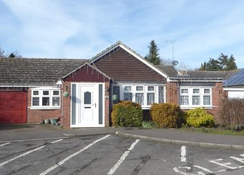 Thumbnail 4 bed bungalow to rent in Suncote Avenue, Dunstable