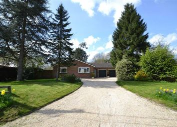 Thumbnail 4 bed property for sale in Pond Lane, Hermitage, Berkshire