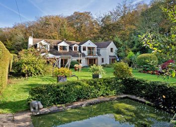 Thumbnail 6 bed detached house for sale in Chudleigh, Newton Abbot