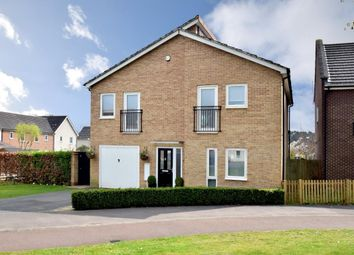 Thumbnail 4 bed detached house for sale in The Parks, Bracknell