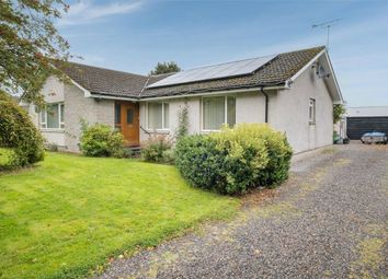 Thumbnail 4 bed detached bungalow for sale in Main Street, Sauchen, Inverurie, Aberdeenshire