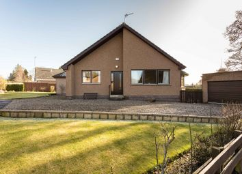Thumbnail 4 bed bungalow for sale in Bearehill Gardens, Brechin, Angus