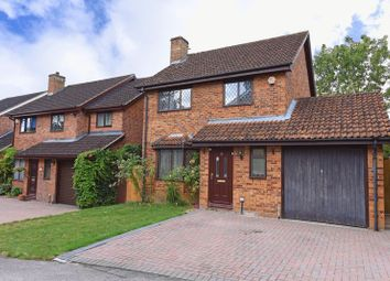 Thumbnail 3 bed detached house to rent in Juniper Close, Chineham, Basingstoke