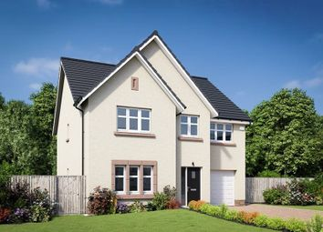 "Thumbnail 5 bed detached house for sale in ""The Crichton"" at Edinburgh Road, Belhaven, Dunbar"