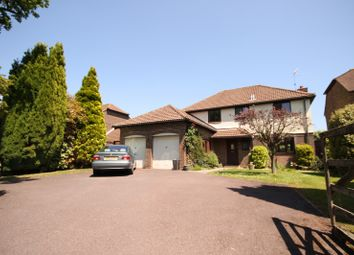 Thumbnail 4 bed property to rent in Plainwood Close, Chichester