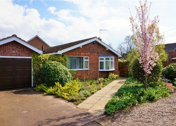 Thumbnail 2 bed detached bungalow for sale in Braydeston Crescent, Norwich