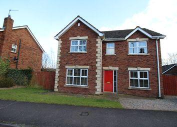 Thumbnail 4 bedroom detached house to rent in Stonebridge Meadows, Lisburn