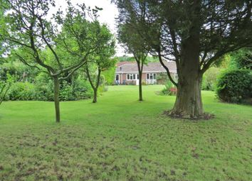 Thumbnail 4 bed detached bungalow for sale in High Street, Burbage, Marlborough