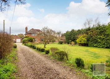 Thumbnail 4 bed detached house for sale in Holmesdale Road, Brundall
