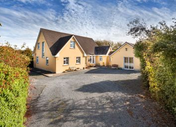 Thumbnail 4 bed detached house for sale in 'little Flower' On c. 4.6 Acres At Trimmer, Killinick, Ireland