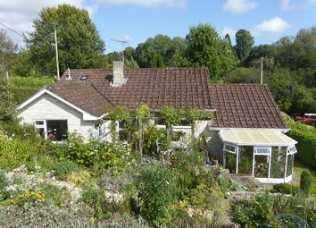 Thumbnail 3 bed detached house for sale in Beeches, Churchill, Axminster, Devon