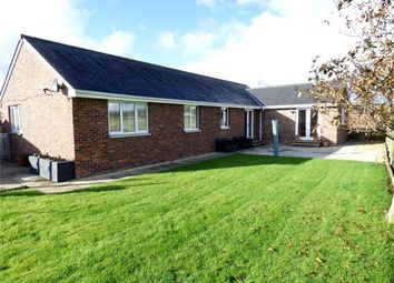 Thumbnail 4 bed detached bungalow for sale in Mackies Drive, Gretna, Dumfries And Galloway