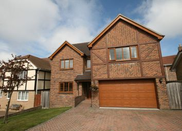 Thumbnail 6 bed detached house for sale in Rushclose, Shanklin