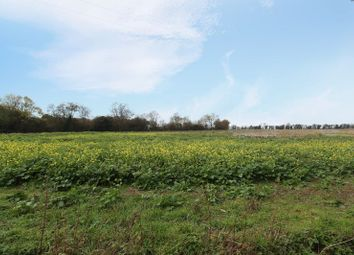 Thumbnail 2 bed cottage for sale in The Hedges, Kimbolton Road, Bolnhurst