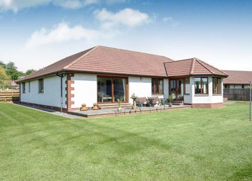 Thumbnail 4 bed bungalow for sale in Averon House Rashgill Park, Locharbriggs, Dumfries
