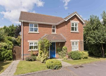 Thumbnail 4 bed detached house to rent in St Andrews Gardens, Cobham