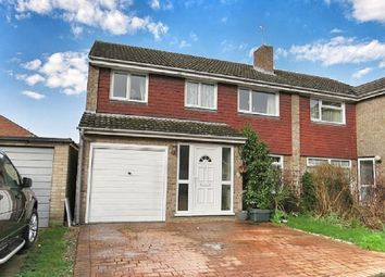 Thumbnail 5 bed semi-detached house for sale in Evergreen Drive, Colchester
