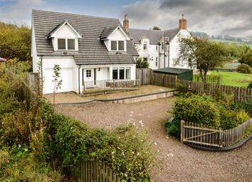 Thumbnail 3 bed detached house to rent in Lower Greenwood House, Houndwood, Berwickshire