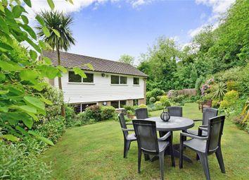 Thumbnail 4 bedroom detached house for sale in Hollingsworth Road, Croydon, Surrey