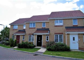 Thumbnail 2 bed terraced house to rent in Hibiscus Crescent, Andover